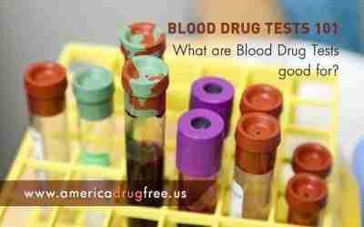 Blood Drug Tests 101: What Are Blood Drug Tests Good For?
